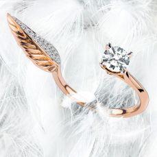 天使-Angel